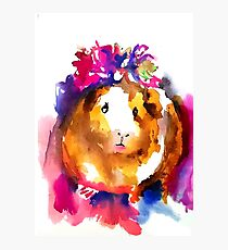Guinea Pig in the Spring Photographic Print