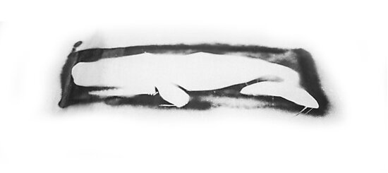 Artifice Whale by Robert McMahan
