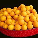 Orangerie by TonyCrehan