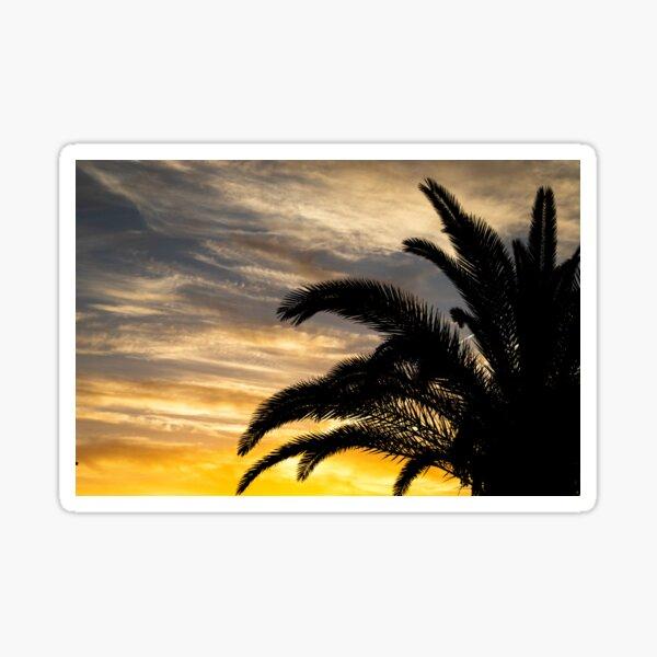 Beautiful Sunset w. Palm Tree Sticker