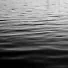 Uncharted Waters by Robert McMahan