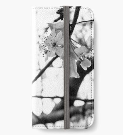 Brilliance iPhone Wallet