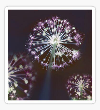 Floral Fireworks Sticker