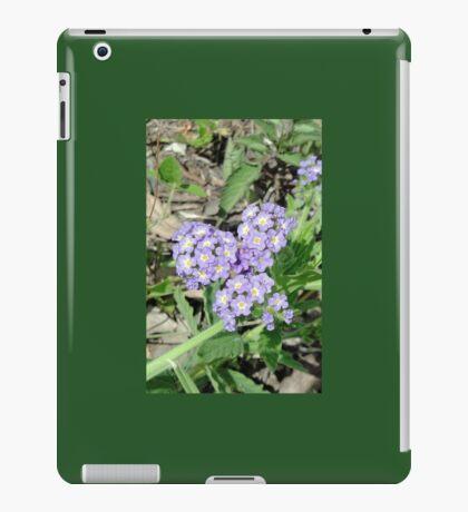 Pretty Weeds in a Brisbane Park iPad Case/Skin