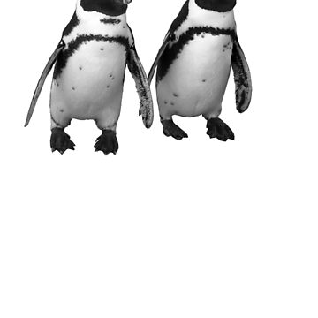 Penguins by BlaizerB