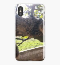 My lovely cat iPhone Case/Skin