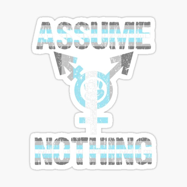 Assume Nothing   Demiboy Flag   Bigender Pride Sticker