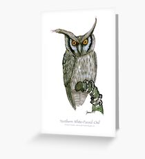 northern white-faced owl, tony fernandes Greeting Card