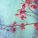 Hope for Spring -revisited by Angela King-Jones