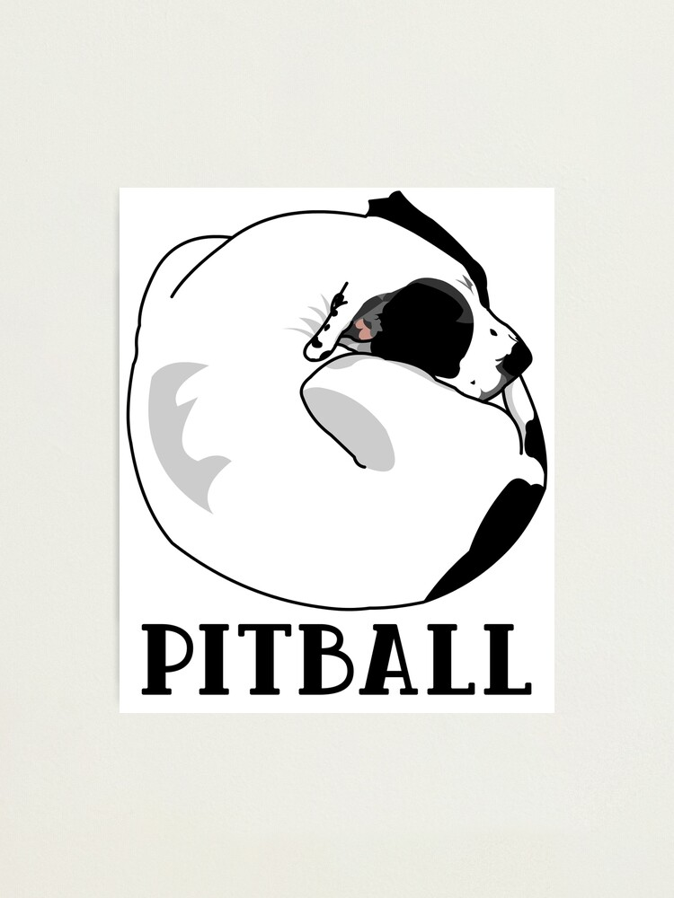 Alternate view of A Tiny Big Dog - Love for Pitballs.  Photographic Print