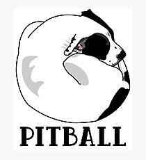 Ein kleiner großer Hund - Liebe für Pitballs. Fotodruck