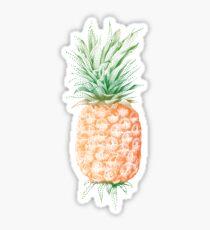 Pinapple illustration Sticker
