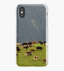 Cattle On Mountain Pasture iPhone Case/Skin