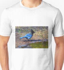 Stellar Jay T-Shirt