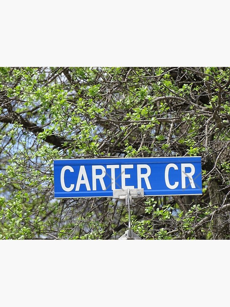 Carter, Carter sticker, Carter magnet, Carter mask, Carter greeting card  by PicsByMi