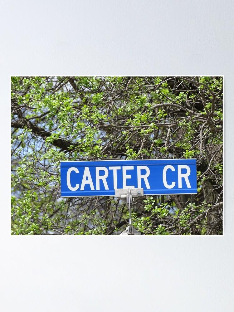 Alternate view of Carter, Carter sticker, Carter magnet, Carter mask, Carter greeting card  Poster