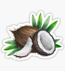 Watercolor coconut Sticker