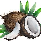 Watercolor coconut by Ekaterina Glazkova