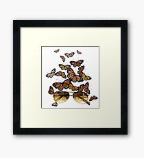 Watercolor monarch butterflies flying out of aviator sunglasses Framed Print
