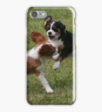 Puppies At Play iPhone Case/Skin