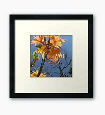 Flame Azalea Reflections Framed Print