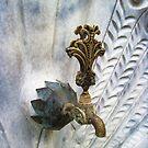 Faucet-Peacock by Roberta Angiolani
