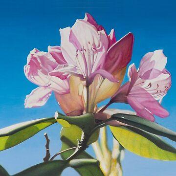 Rhododendren by LMAnice