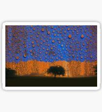 Acid Rain Sticker