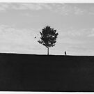 Tiny by Kevin  Keller