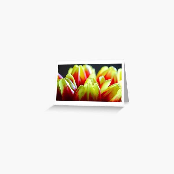 Rhubarb and custard Greeting Card
