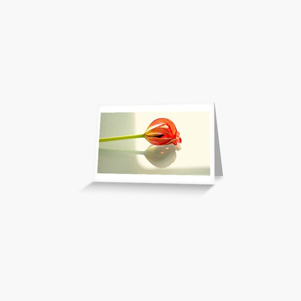 Lying in state Greeting Card