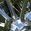 Chrome by Maryanne Lawrence
