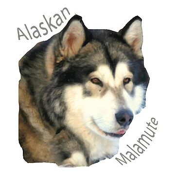 Products with breeds of dogs, Alaskan Malamute by Hujer