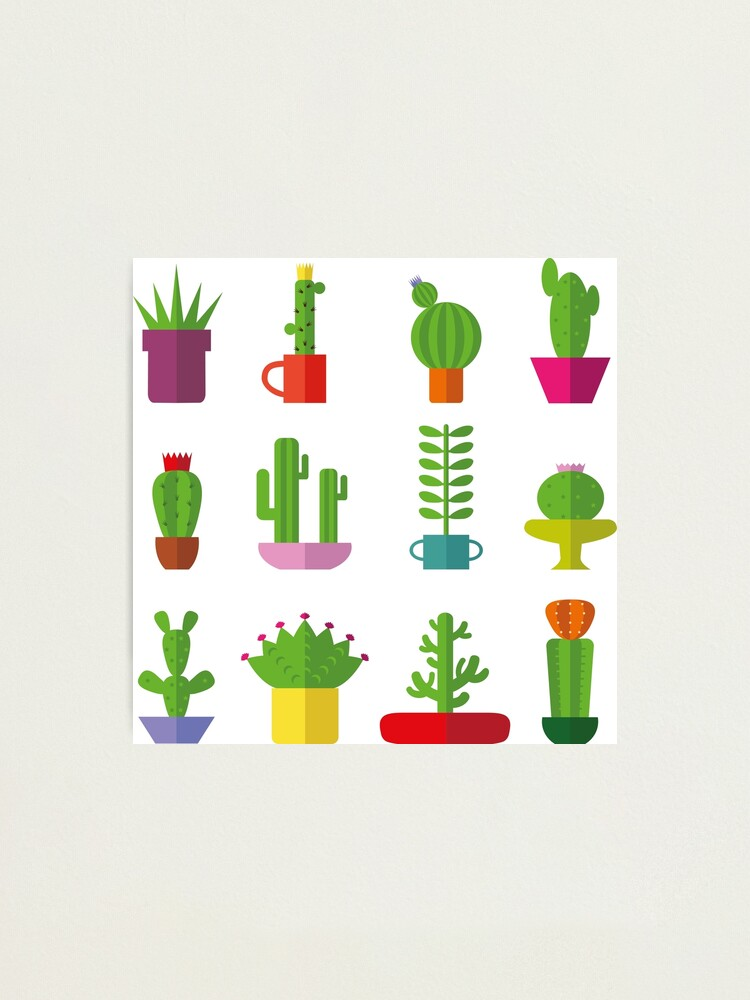 Alternate view of Funny Cactus  Photographic Print
