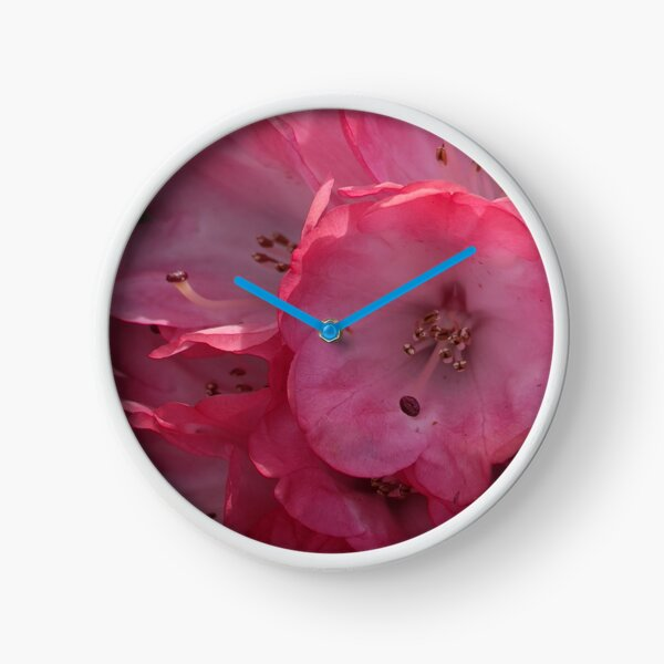 Rhododendron in Pink Clock