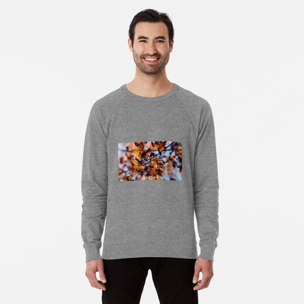 Rebirth  Lightweight Sweatshirt