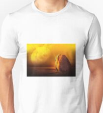 The Asteroid Unisex T-Shirt