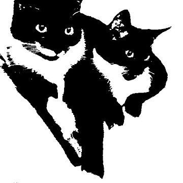 Tuxedo Cats by EMSART95