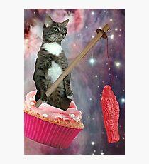 Lámina fotográfica cupcakes suecos cat