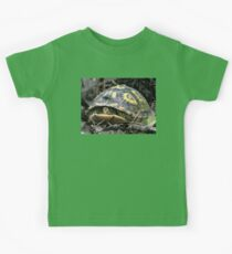 """Will you flit a little faster?"" said the turtle to the fly. Kids Tee"