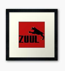 ZUUL Framed Print
