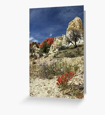 Red Flowers At Red Rock Canyon Greeting Card