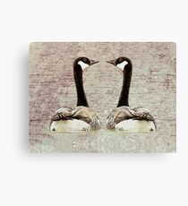 A Monogamous Pair Canvas Print