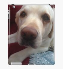 Grady the lab iPad Case/Skin