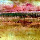 Marshlands by Dana Roper