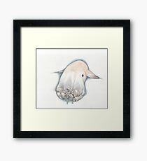 dumbo octopus Framed Print