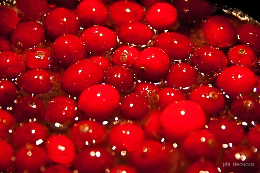 Red Cranberries by phil decocco