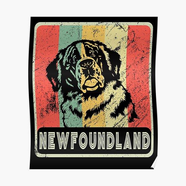 Vintage Newfoundland Dog Gift For Dog Lover Poster