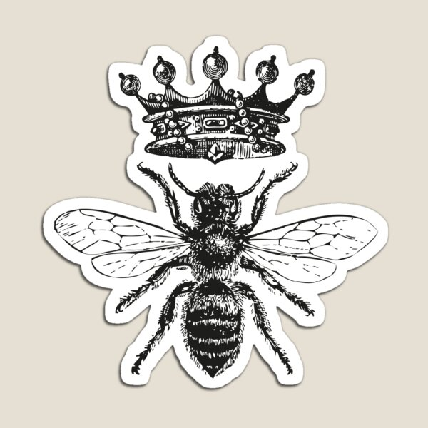 Queen Bee | Vintage Honey Bees | Black and White |  Magnet