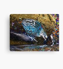10. It Is A Very Good Day Canvas Print